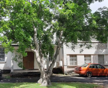Commercial Property for Sale in Warrens St. Michael